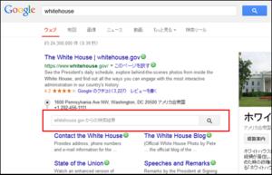 google-search-box2