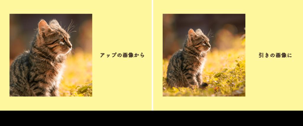 表示エリアの大きさは同じで中の写真を拡大縮小した画像