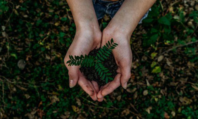 sustainable①